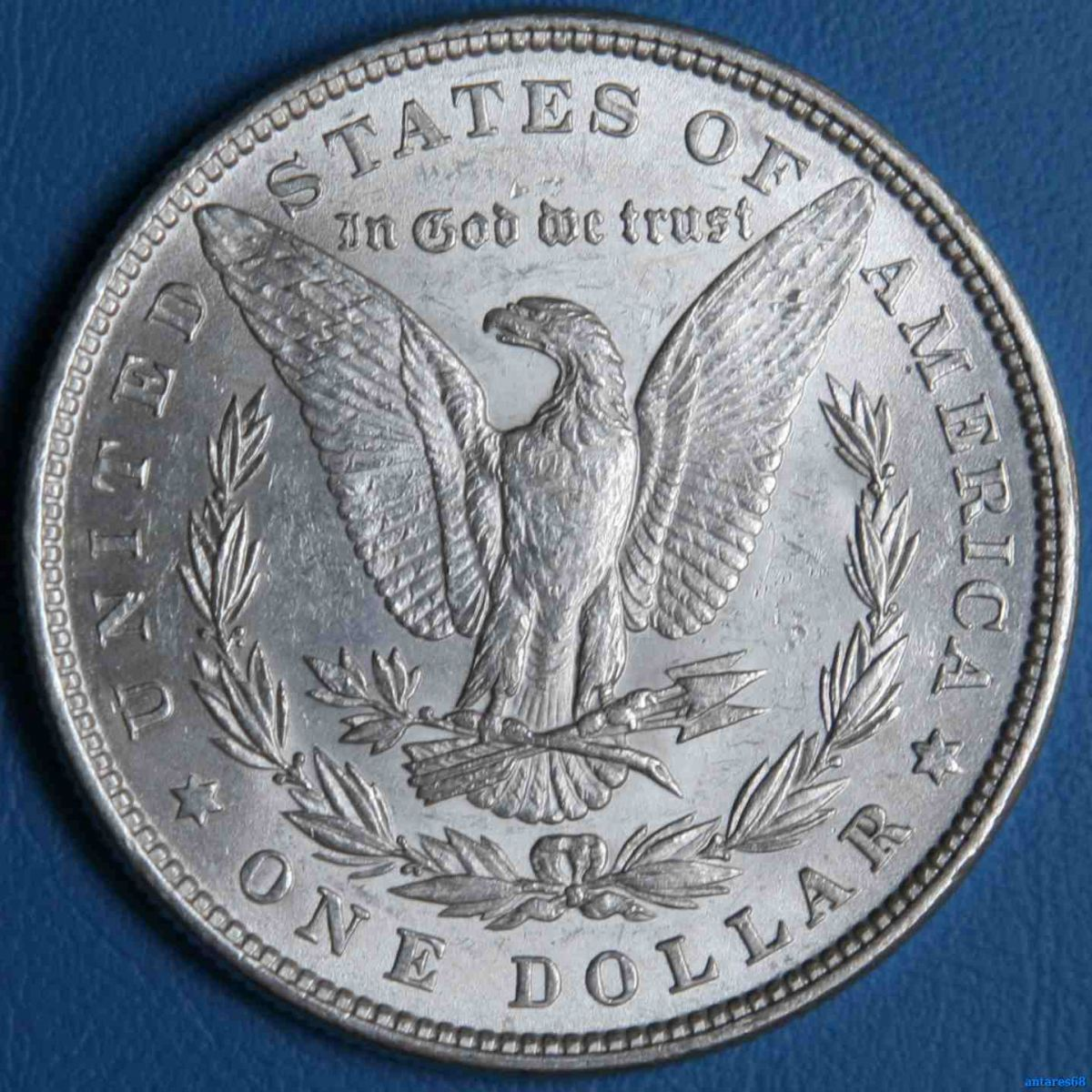 Dollaro Morgan