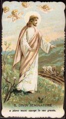 12  Gesù Seminatore