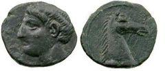 Punica Scipio
