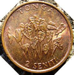 2 Seniti 1990 Tonga
