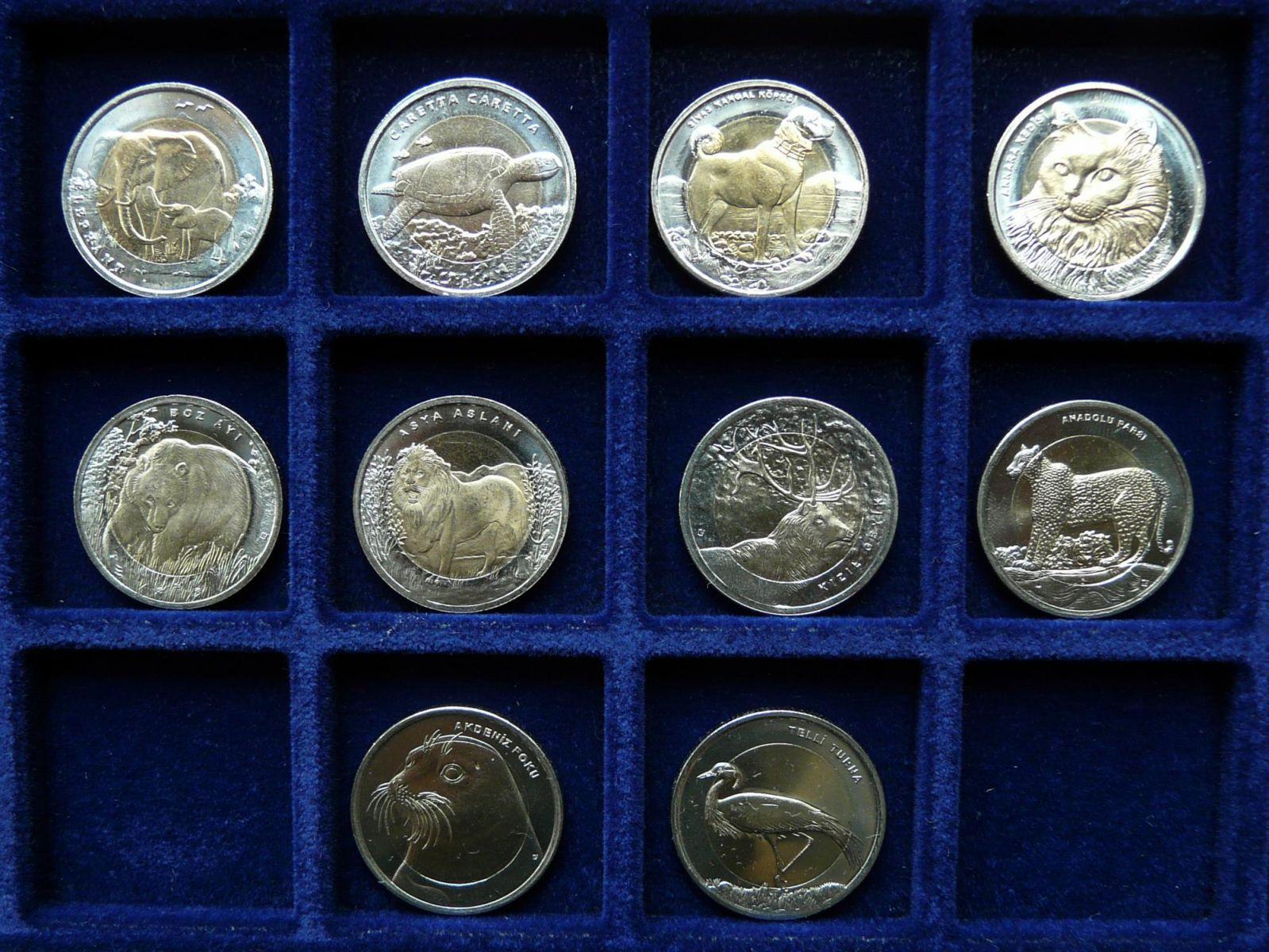 1 Lira Turkey