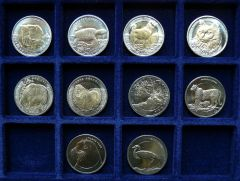 1 Lira Turchia   2009   2013 (Custom) (3)