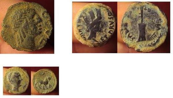 post-19030-1263369131,89_thumb.jpg