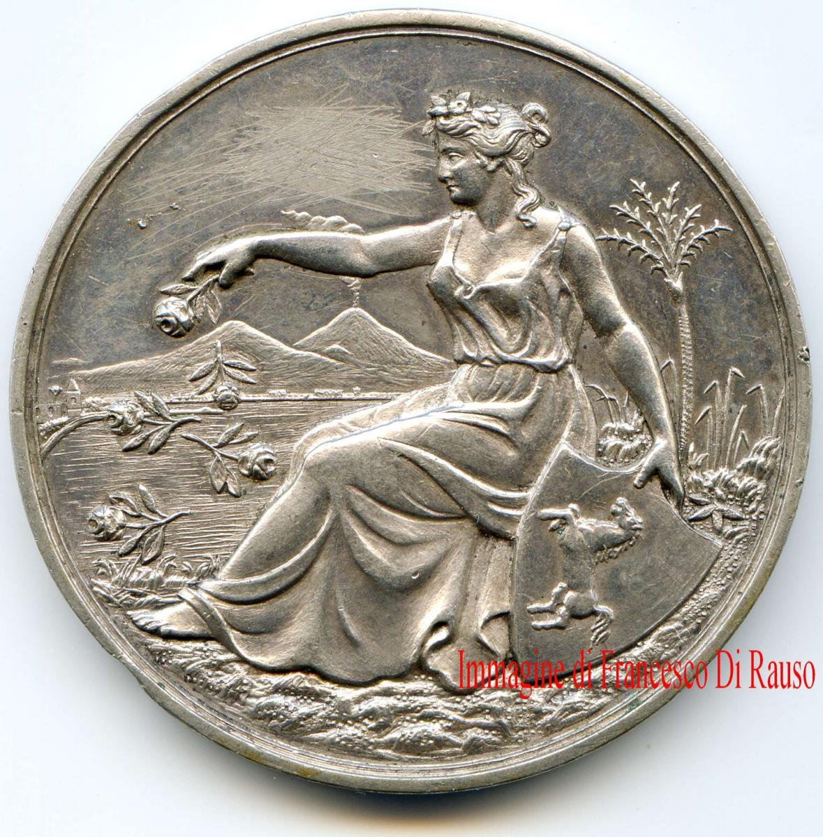 Le medaglie per le esposizioni e fiere in italia for Siti di collezionismo