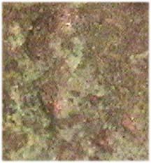 post-1966-051905300 1288607778_thumb.jpg