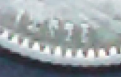 post-27461-0-10885100-1417301779_thumb.j