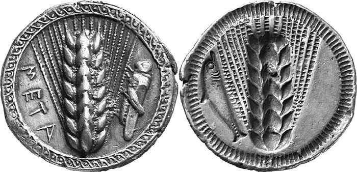 006  Metaponto Noe 104 ex Leu Num. 81 n. 14.jpg