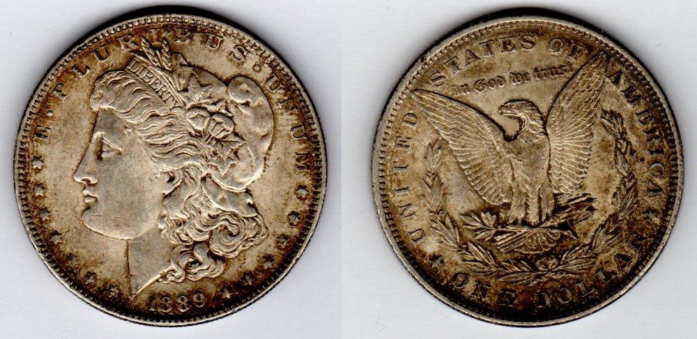 Dollaro 1889.JPG