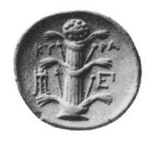 Rovescio moneta Cirene simbolo E.JPG