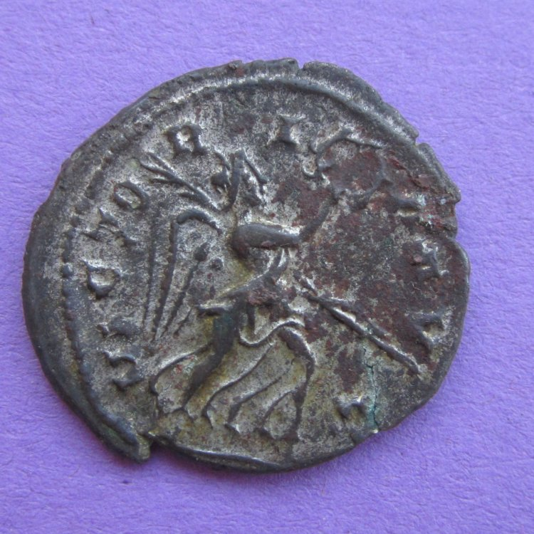 Laelianus... a nice find! IMG_8531.thumb.jpg.6a3d1a9d5ed7d388da871d4eb7ad2a83