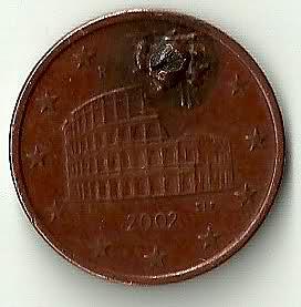 335.jpg