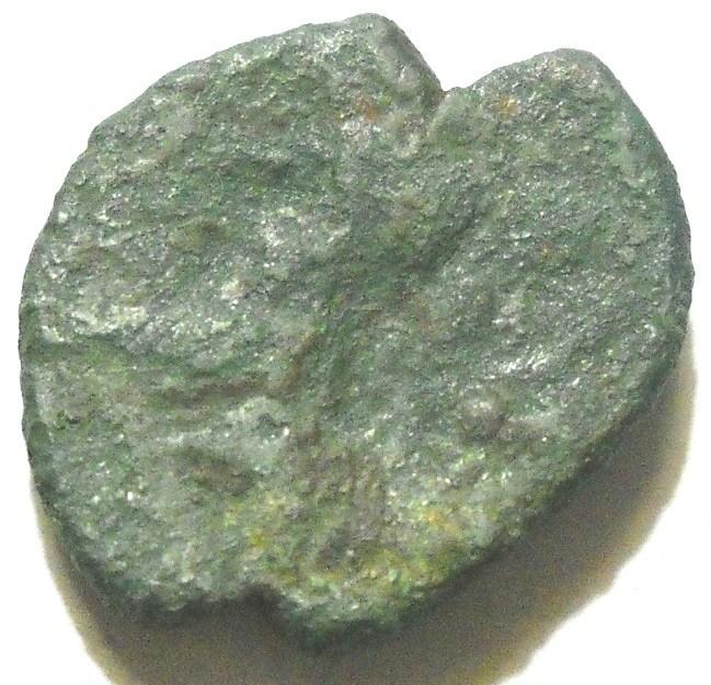 moneta 4 d.jpg