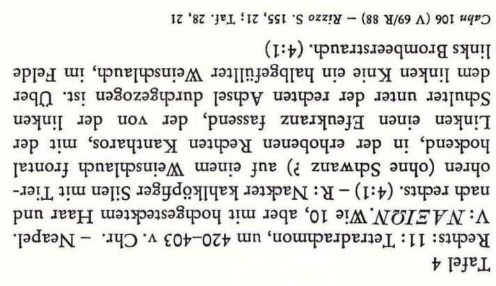 003 Franke-Hirmer tav. 4  n. 11.jpg