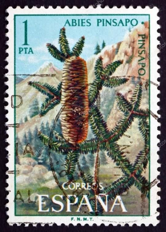 depositphotos_40362977-stock-photo-postage-stamp-spain-1972-spanish.jpg