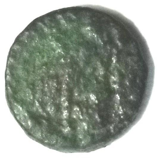 DSCN3148b.jpg