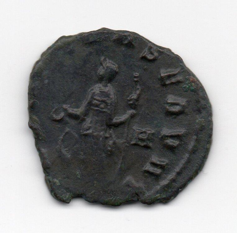 moneta010.jpg