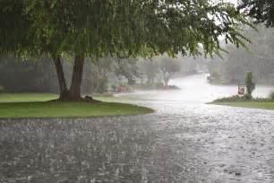 rain.jpg.3677ebaa0a1fda662404a411b3055e55.jpg
