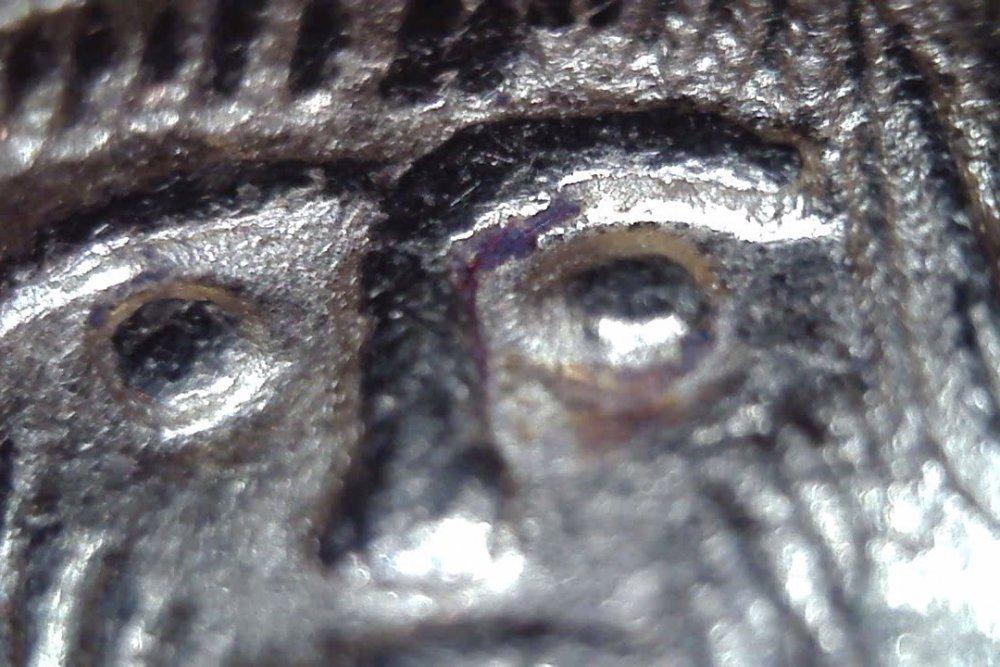 Focas D Dettaglio occhio sx.jpg
