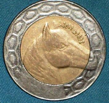 Algeria d.jpg
