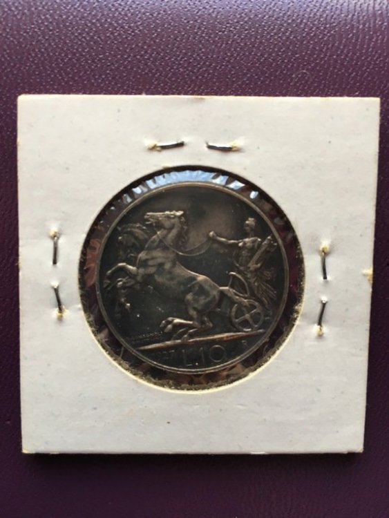 1205-1.jpg