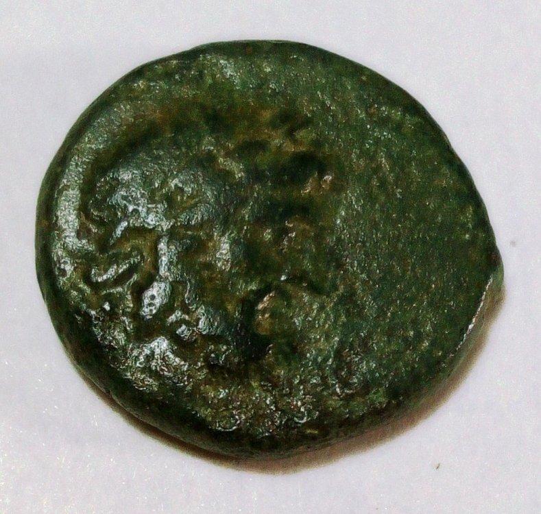 AE greca Zeus.jpg