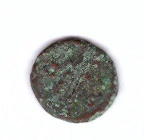 monetina 2.jpg