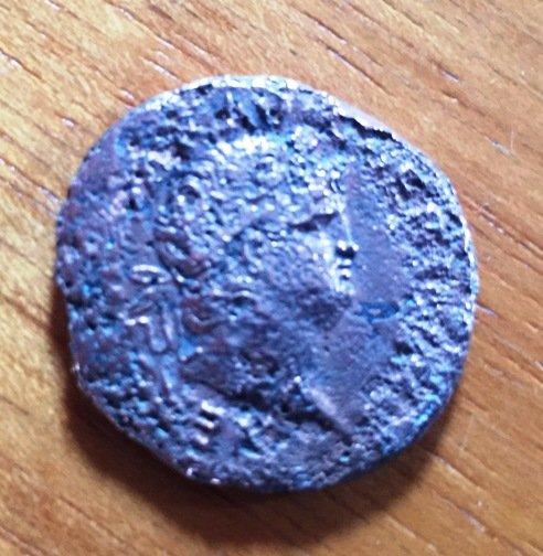 moneta3.JPG