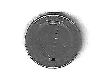 Monetina Bosniaca.jpg