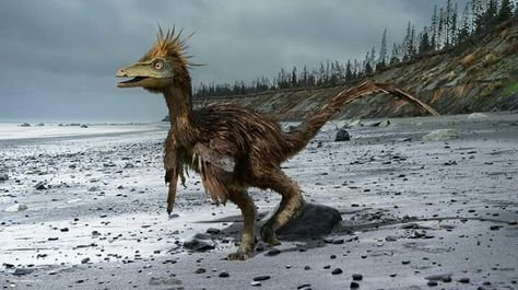 719d67db8def7e344638276e1b0b06af--prehistoric-animals-dinosaurs.jpg.6b34d2df24b742989e5b6254fa3c7512.jpg
