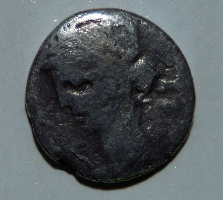 Sca186.jpg