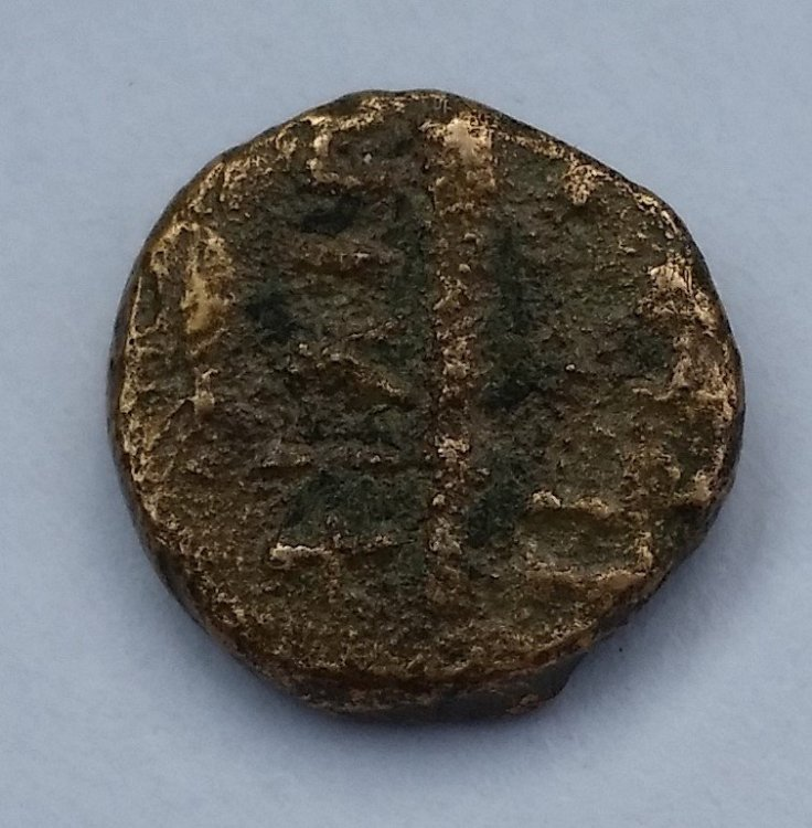 moneta_greca_rovescio.jpg