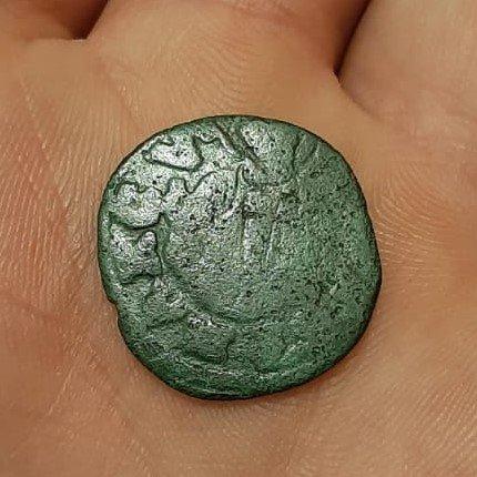 moneta 2.jpeg