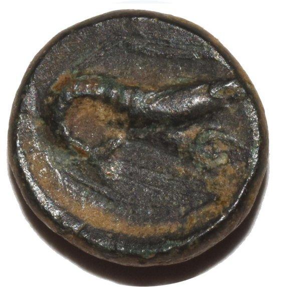 bronzo-_.jpg