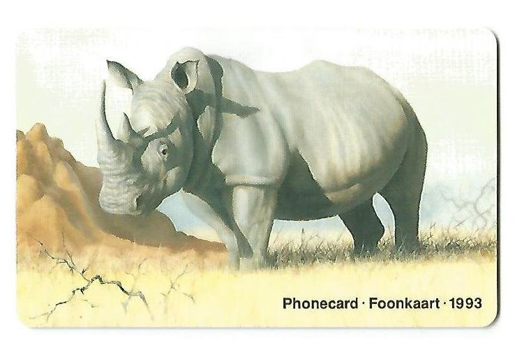 020.al verso, Rinoceronte.jpg