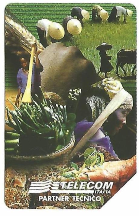 084.al verso IFAD per lo Sviluppo agricolo.jpg