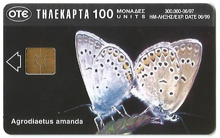 023.Scheda greca, al recto una farfalla.jpg