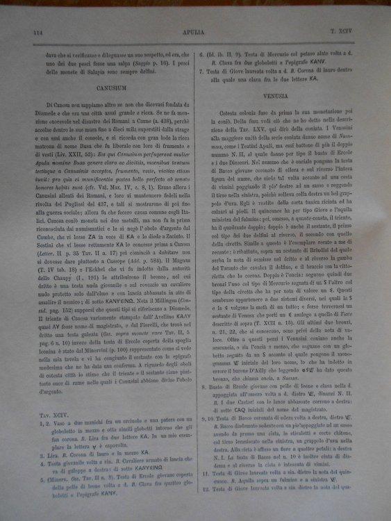 DSCN3133.JPG