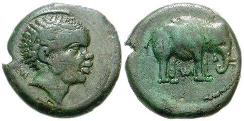 moneta cartaginese trovata in val di chiana.jpg