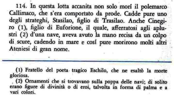 405 Erodoto VI , 114.jpg