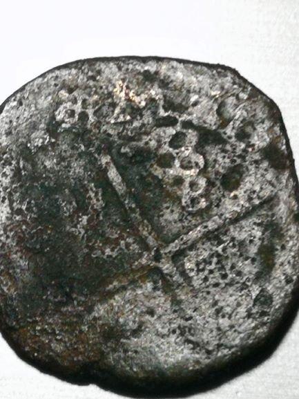 moneta a.jpg