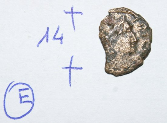 DSC04224.JPG