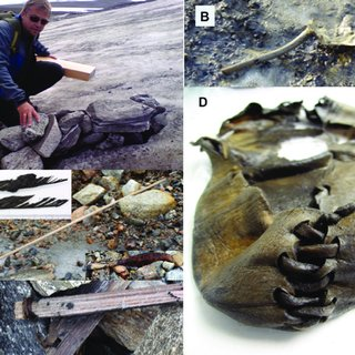 Different-types-of-artefacts-associated-with-reindeer-hunting-at-ice-patches-A-Espen_Q320.jpg