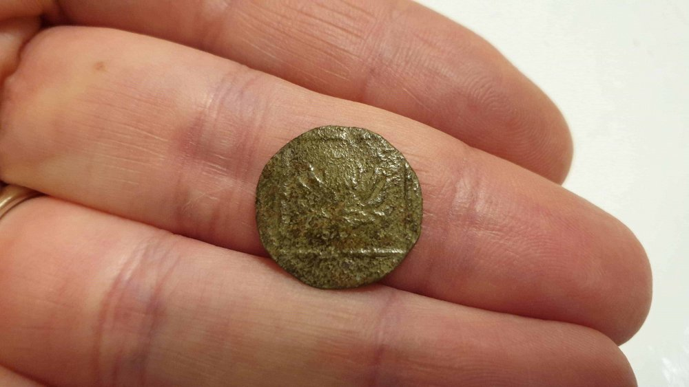 moneta1-min-min-min.thumb.jpg.3f069a19945bb9a07bea0adb4d937f9c.jpg