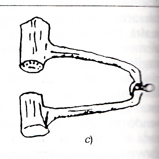 Conio incavigliato (2).jpg