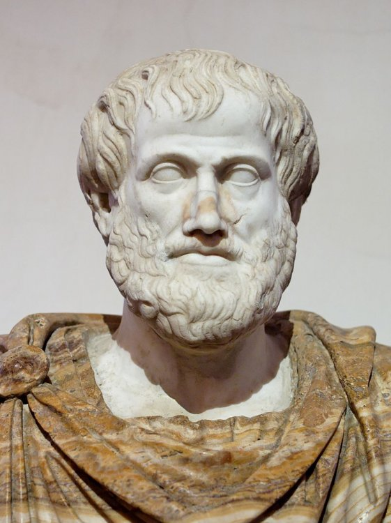 Aristotele.thumb.jpg.a3bff1f610c532164b9be62bbaf3728b.jpg