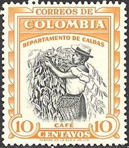 Coffee-harvest-Caldas.jpg
