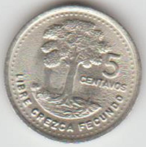 5cgua1991.PNG