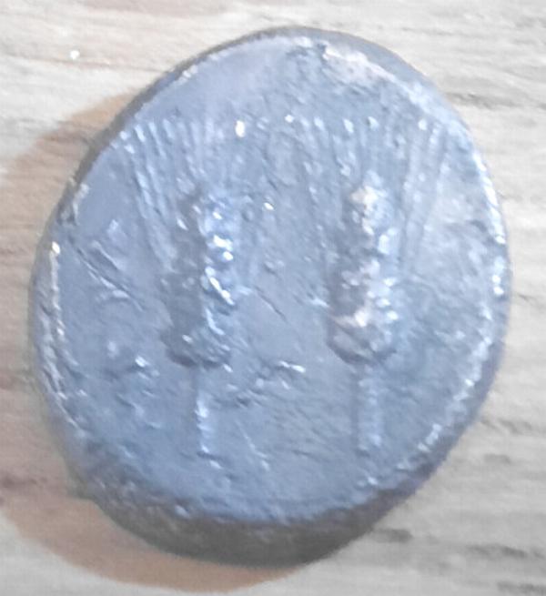 moneta.jpg