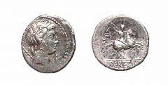Publius Crepusius