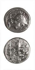 Caius Scribonius